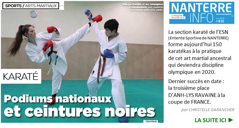 Es Nanterre  Club Omisport En Rgion Parisienne  Entente Sportive